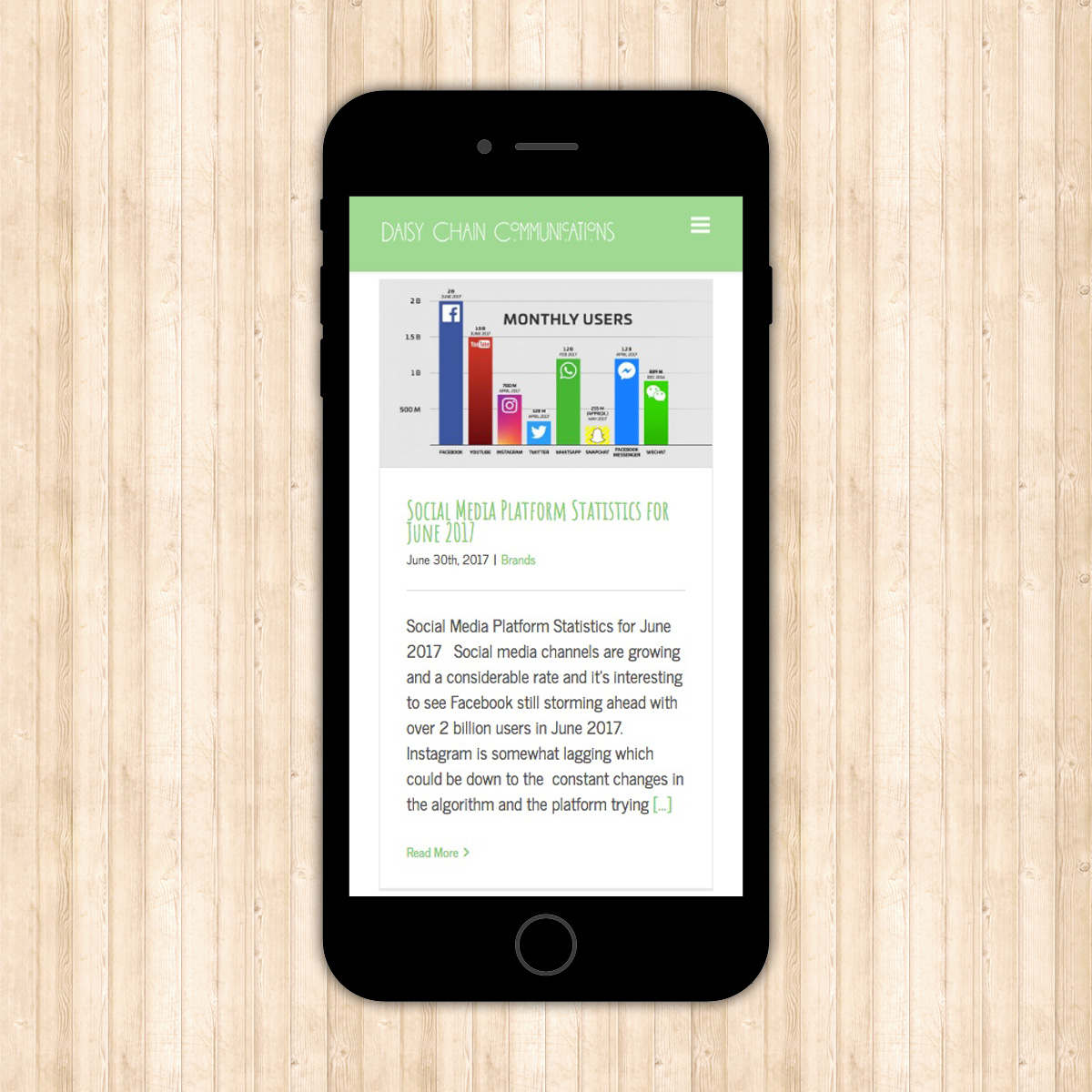 The Digital Moose | Website Design | Daisy Chain Communications